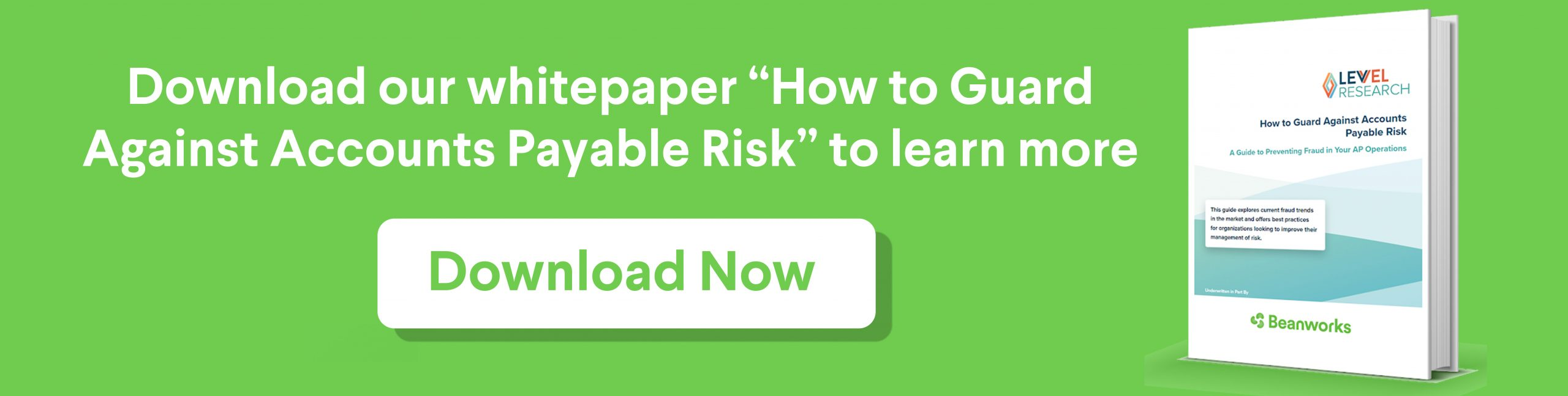 download whitepaper how to guard against accounts payable risk